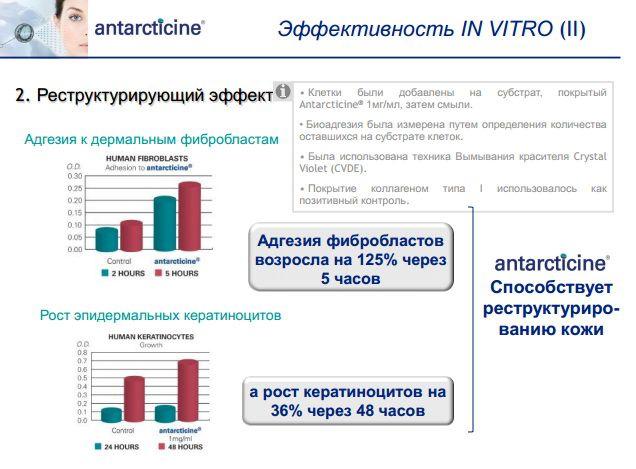Антарктицин эффективность in vitro