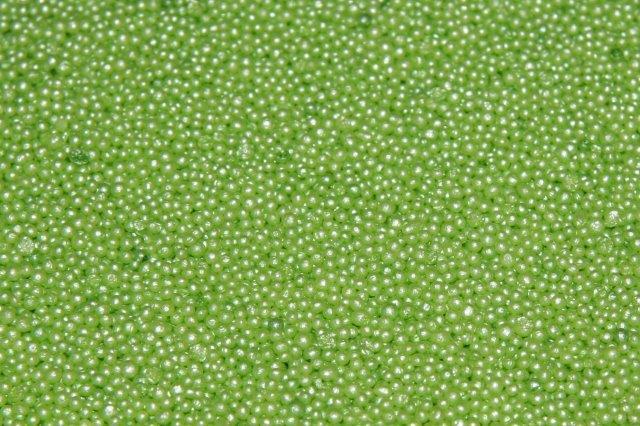 Бисер для ванн Море зелени Зеленая гамма