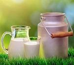 Аминокислоты молочного протеина сухие гидролизованные низкомолекулярные (1000Da)