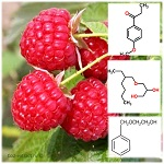 Фитонсит, консервант на основе кетона малины