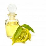 Ylang-Ylang Fragrant Oil