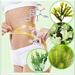Liposomes Bio-Slim PF (Био-Слим липосомы)