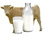 Молочный протеин гидролизованный