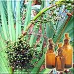Сверхкритический CO2 экстракт пальмы карликовой (сабаль)