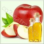 Яблока альпийского семян масло