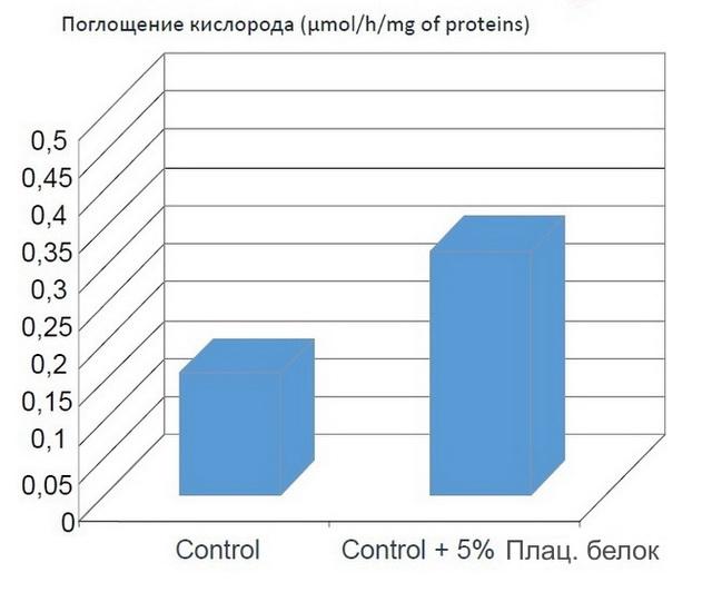 Плацентарный белок