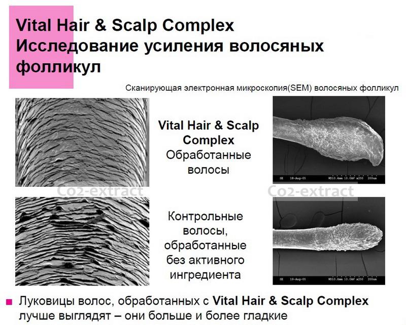 Vital hair & scalp complex исследование эффективности